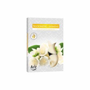 p15-169-bispol-kwiat-jasminu-tealight-podgrzewacze-6-sztuk