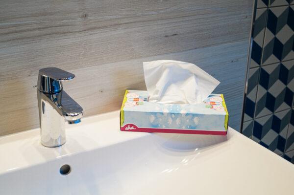 perfecto-odra-pak-chusteczki-higieniczne-kosmetyczne-biale-pudelko-sloniki-10